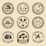Vector retro reeks landbouwbedrijf verse logotypes Uitstekende etiketten met hand geschetste landbouwmachineillustraties Royalty-vrije Stock Foto