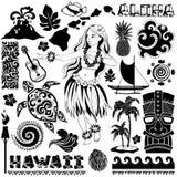 Vector Retro- Satz hawaiische Ikonen und Symbole Lizenzfreies Stockbild