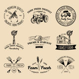 Vector retro set of farm fresh logotypes. Organic products badges. Eco food signs.Sketched agricultural equipment icons. Royalty Free Stock Image