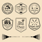 Vector retro set of farm fresh logotypes. Vintage labels with hand sketched agricultural equipment illustrations. Royalty Free Stock Image