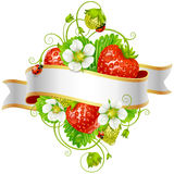 Vector ripe strawberry and white ribbon for your text Stock Photo