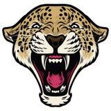Roaring leopard head. Vector of Roaring leopard head Royalty Free Stock Photography
