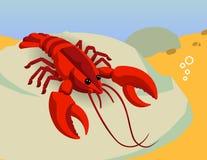 Vector rojo del océano de la langosta Fotografía de archivo libre de regalías