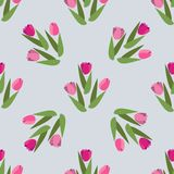 Vector Romantic hand drawn background with tulips. Vintage seamless pattern Tulips royalty free illustration