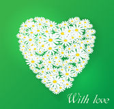 Vector romantic illustration. Chamomile Stock Photo