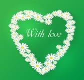 Vector romantic illustration. Chamomile. Vector romantic illustration with heart of Chamomile flowers Stock Photos