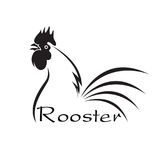 Vector of an rooster disign on white background. Animals. Vector of an rooster disign on white background. Farm Animals Royalty Free Stock Photos
