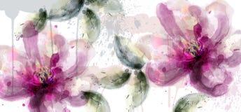 Vector rosado de la acuarela de la bandera de las flores del lirio decoración floreciente floral delicada Tarjeta de la invitació ilustración del vector