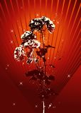 Vector rose. On red grunge background Royalty Free Stock Photo