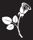 Vector rose art illustration Royalty Free Stock Photos