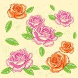 Vector rose background. Floral illustration royalty free illustration
