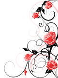 Vector Rose Background Stock Image