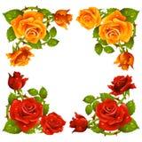 Vector rose corner isolated on white background vector illustration