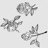 Vector rose flower tattoo pattern, floral fabric vintage wallpaper. Cute backdrop stock image