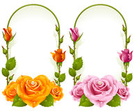 Vector Rose Frames On White Background Stock Photo