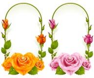 Vector rose frames  on white background Stock Photo