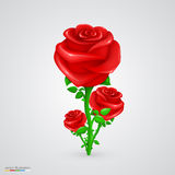 Vector rose. Illustration art flower red background Royalty Free Stock Photos