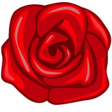 Rose Royalty Free Stock Photo