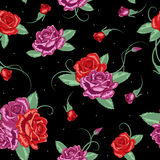 Vector rose seamless background Stock Image