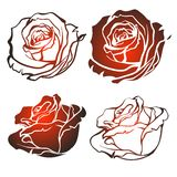 Vector rose Stock Images