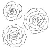 Vector roses black outline on the white background Stock Photography