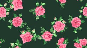 Vector Roses Pattern, Wedding Design. stock illustration
