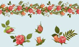 Vector Roses Stripe and elements vector illustration