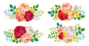 Vector rosetas das rosas com folhas grupo de elementos decorativo do casamento e do feriado isolado no branco Imagem de Stock Royalty Free