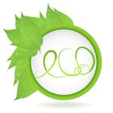 Vector. A round banner of branches with leaves and drops of water with the inscription eco. Green leaves . vector leaves and place. Vector. Round banner of Stock Photo