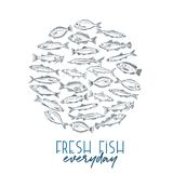 Poster hand drawn fish. Vector round banner hand drawn fish. Design seafood with bream, mackerel, tunny or sterlet, codfish and halibut. Outline icon tilapia Royalty Free Stock Photo