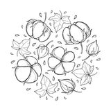 Vector round composition with outline Cotton boll, leaf and capsule in black isolated on white background. Ornate Cotton plant. Vector round composition with Stock Photo