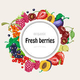 Vector round frame with garden berries Royalty Free Stock Photography