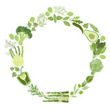 Vector round frame with green vegetables, spices and culinary herbs. Illustration with place for text,  can be used  creating card Royalty Free Stock Images