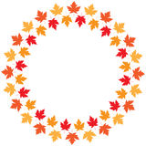 Vector round frame from maple autumn leaves Royalty Free Stock Photos