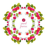 Vector round frames with beetroot and leaves in origami style Stock Image