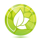Vector round green leaves icon, button Royalty Free Stock Image