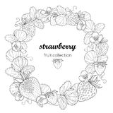 Vector round wreath with outline Strawberry with berry, flower and leaves in black  on white background. Fruit elements. Royalty Free Stock Photography