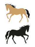 Vector running horses Royalty Free Stock Image