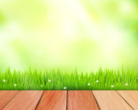 Vector rustic wooden planks and grass on blue Stock Image