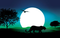 Vector Safari Illustration Royalty Free Stock Photo