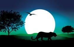 Vector Safari Illustration. This vector African safari illustration card Royalty Free Stock Photo