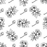 Vector sakura seamless pattern of flowers. And leaves isolated on white background Stock Photos