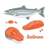 Vector salmon in flat style. vector illustration