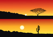 Vector savanna. Safari Royalty Free Stock Images
