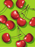 Vector of scattered cherries. Illustration of shiny fresh cherries Royalty Free Stock Images