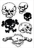 Vector schedel Royalty-vrije Stock Afbeelding
