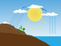 Vector Schema Of The Water Cycle In Nature Royalty Free Stock Image