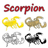 Vector scorpion isolated Stock Photography