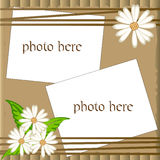 Vector scrapbooking frame with camomile Royalty Free Stock Photos