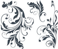 Vector Scroll Set Royalty Free Stock Image